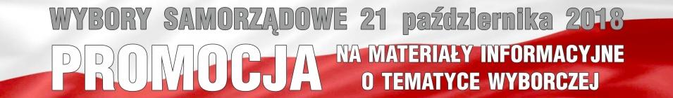 Wybory samorządowe 21 października 2018
